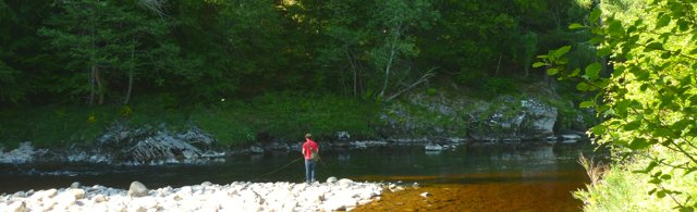 SALMON FISHING on the exciting River Findhorn