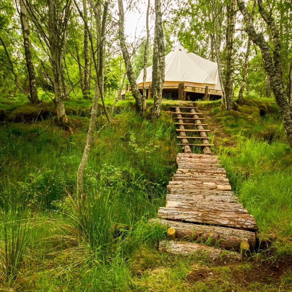 bell tent in the woods at Ace Hideaways